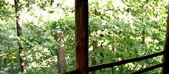 Private Vacation in Homer's Place Log Cabin Eureka Springs