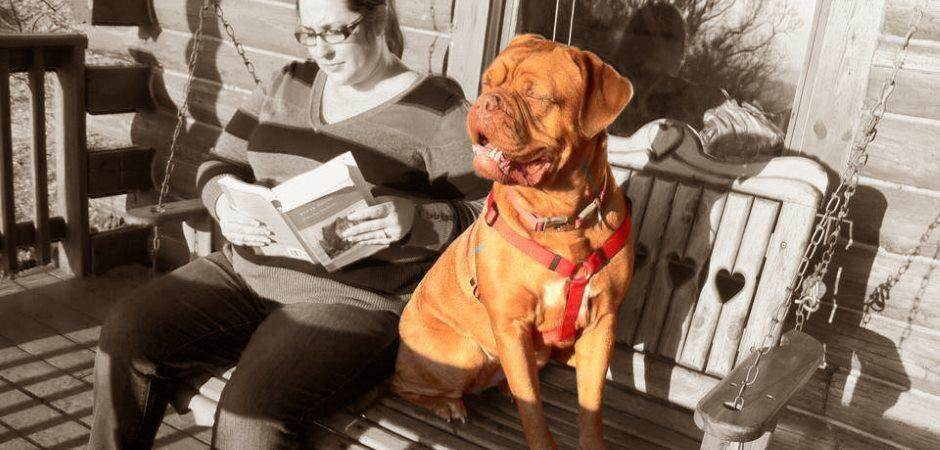 Pet Friendly Cabins in Eureka Springs Arkansas - Reading a book on the porch swing and Dogue de Bordeaux