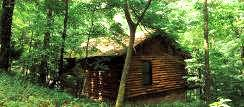 Hidden and Secluded cabin rental in Eureka Springs, Ozarks